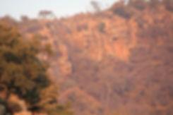 Montain of Faith Mountain trails