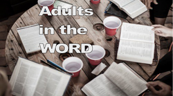 Adults in the Word