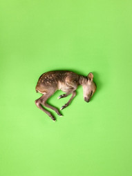 Bambi I