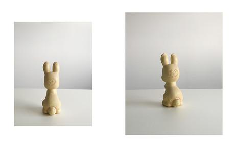 alignment : rabbit