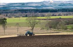 Strathmore Ploughing 2016