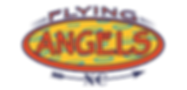 Flying Angels Logo