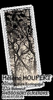 logo ln.png