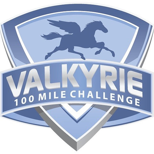 VALKYRIE 5 inch x 4.8 in Sticker
