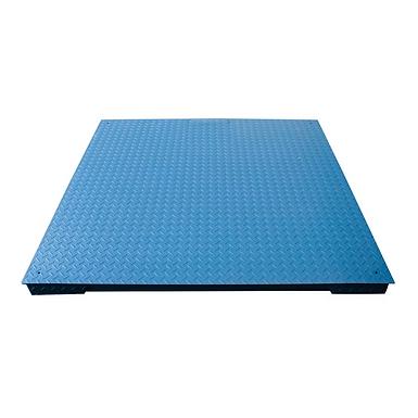 PP-916 Series NTEP Floor Scales