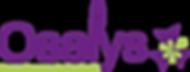 Création identité visuelle logo