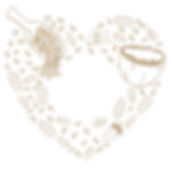 healthy-icon.png