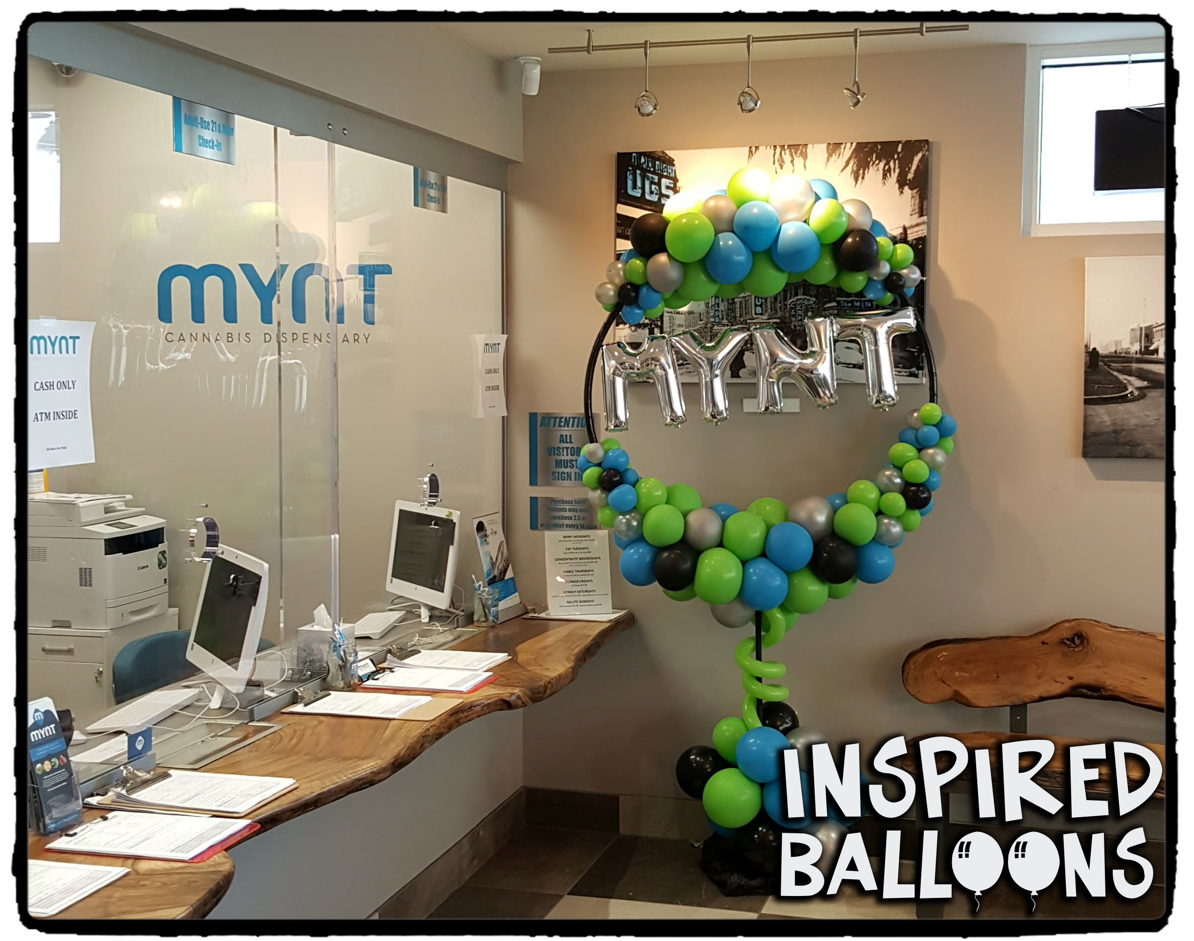 MYNT Organic Balloon Hoop Display