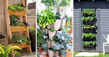 vertical gardening.jpg