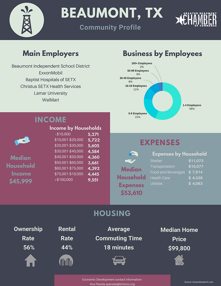 Business Infographic2page.png