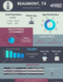 Business Infographic1page.png