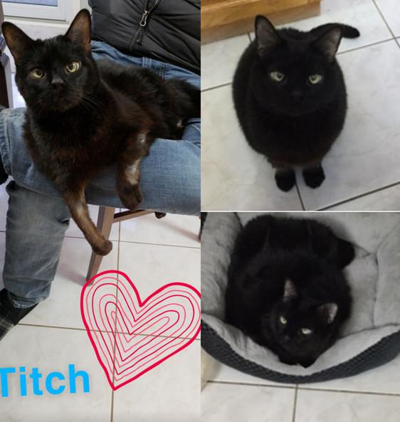 titch.jpg
