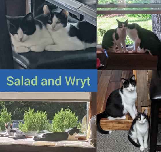 Salad and Wryt.jpg