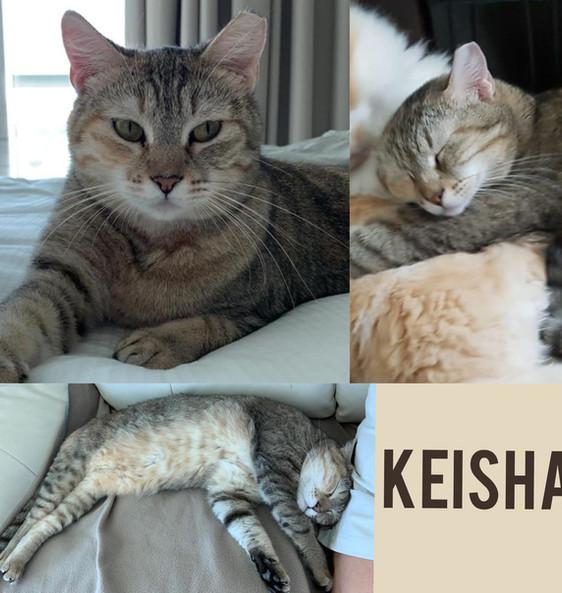 Keisha.jpg