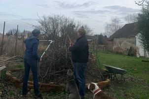 Bei der Arbeit Bäume stutzen