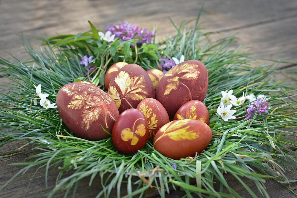 Ostereier im Nest, ohne Chemie gefärbt