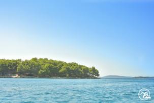 Kleine Insel in den Kornaten Kroatien