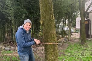 Jess beim Baumfällen :P