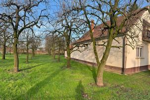 Grundstück mit Bäumen beim Haussitting in Unagrn