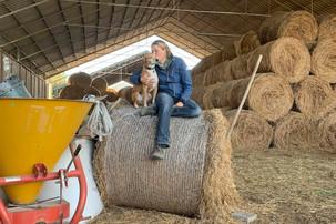 Hund Korny mit Jess auf Heuballem im Stall
