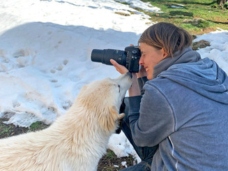 Hund Molly hilft beim Shooting