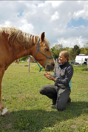 Jess kniet vor einem Pferd.