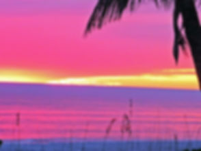 sunset pink.jpg
