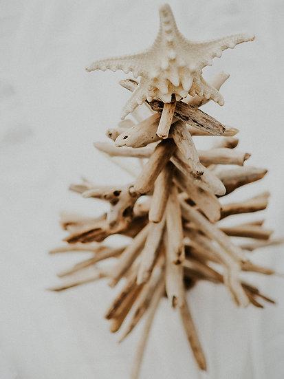 "24"" Driftwood Christmas Tree by Shane Hope"