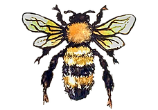 the bee copy fixed.png