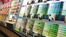 Choosing a Paint Color