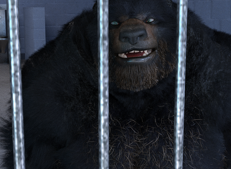 The New Jail Bear
