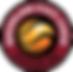 QSL_Logo_Div1 Basketball.png