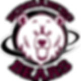 Bundaberg Bears Logo white.png