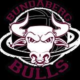 Bundaberg Bulls Logo white.png