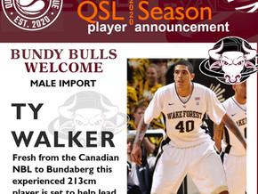 QSL Bulls Import News!