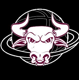 Bundaberg Bulls Logo plain maroon sml