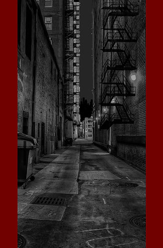 DOLPHIN-STREET-BACKCOVER-ART-1.1.jpg