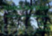 Timber Tantrum 2020.png