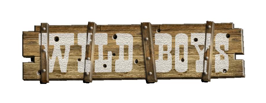 Wild Boys - A Peculiar Western