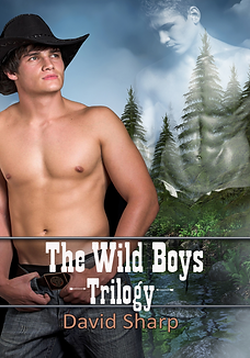 Wild Boys Trilogy postcard.png