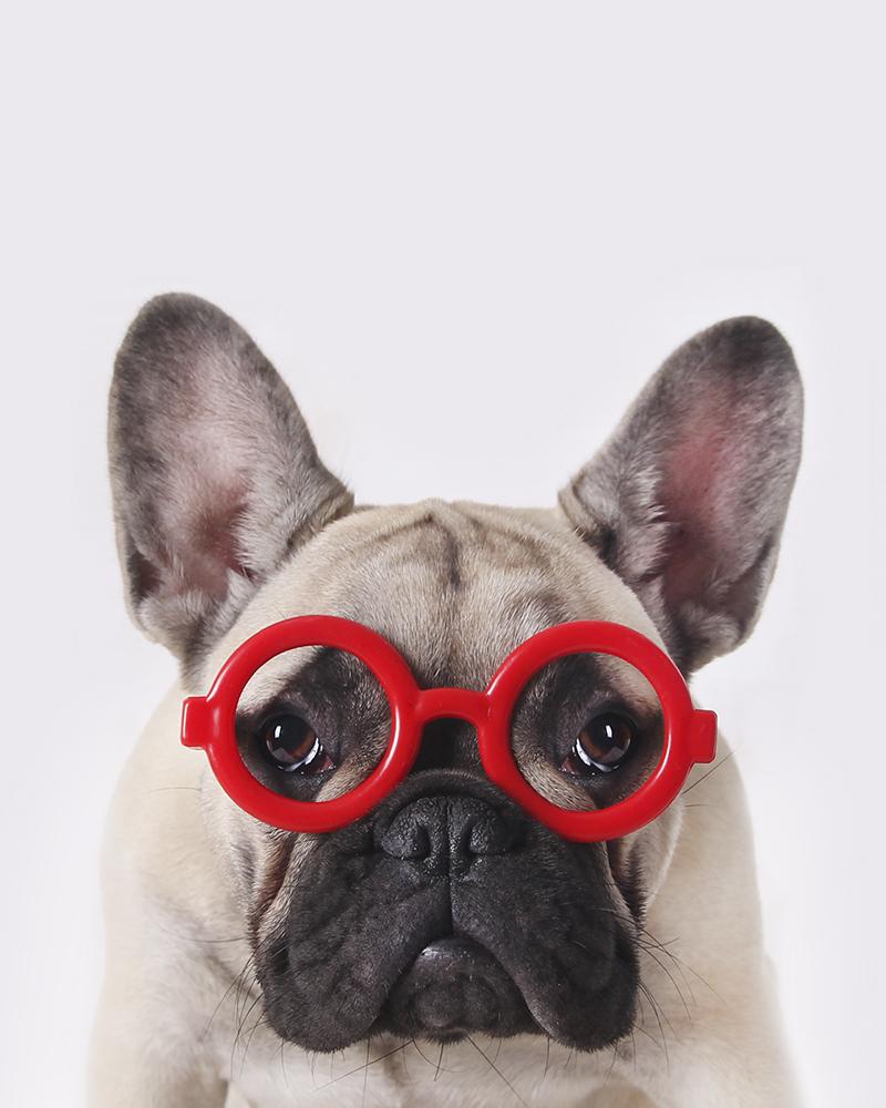 catalina gafas rojas