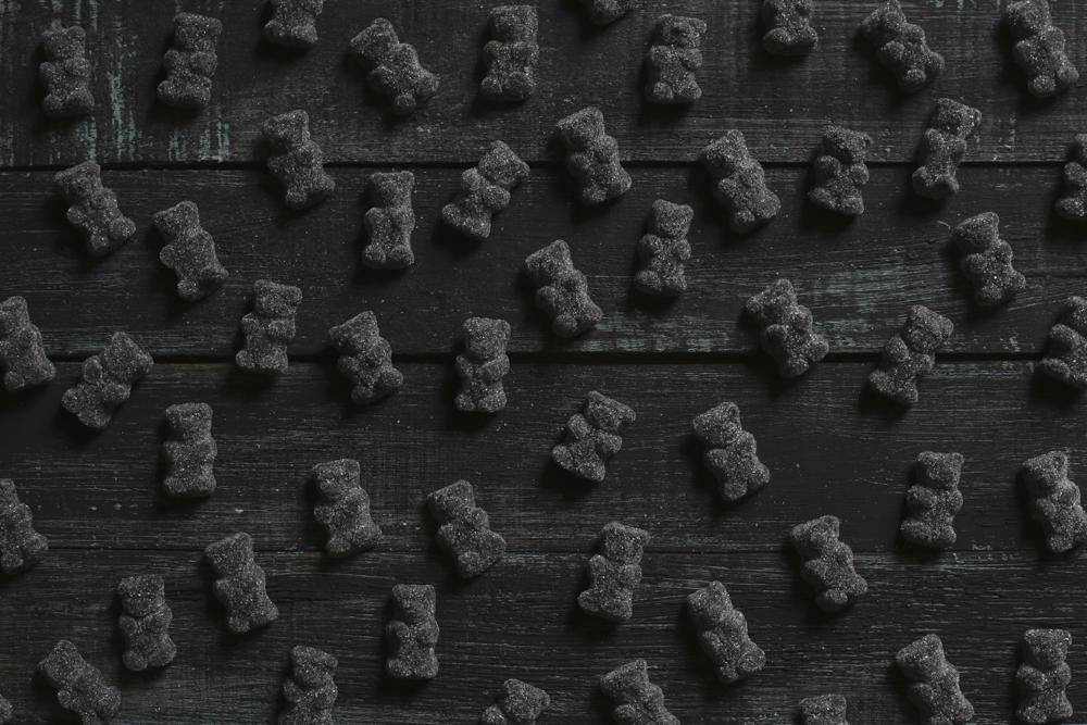 osos negros 01