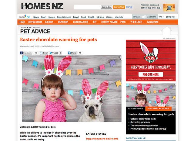 MSM HOMES NZ, Nueva Zelanda