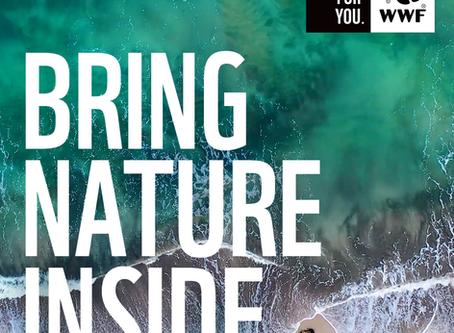 WWF SA Soundscapes: Bringing nature inside