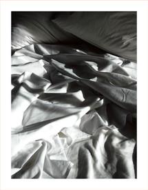 0178.Nest(e)scapes1255, 2008
