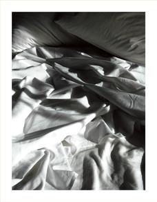 Nest(e)scapes.1255, 2008