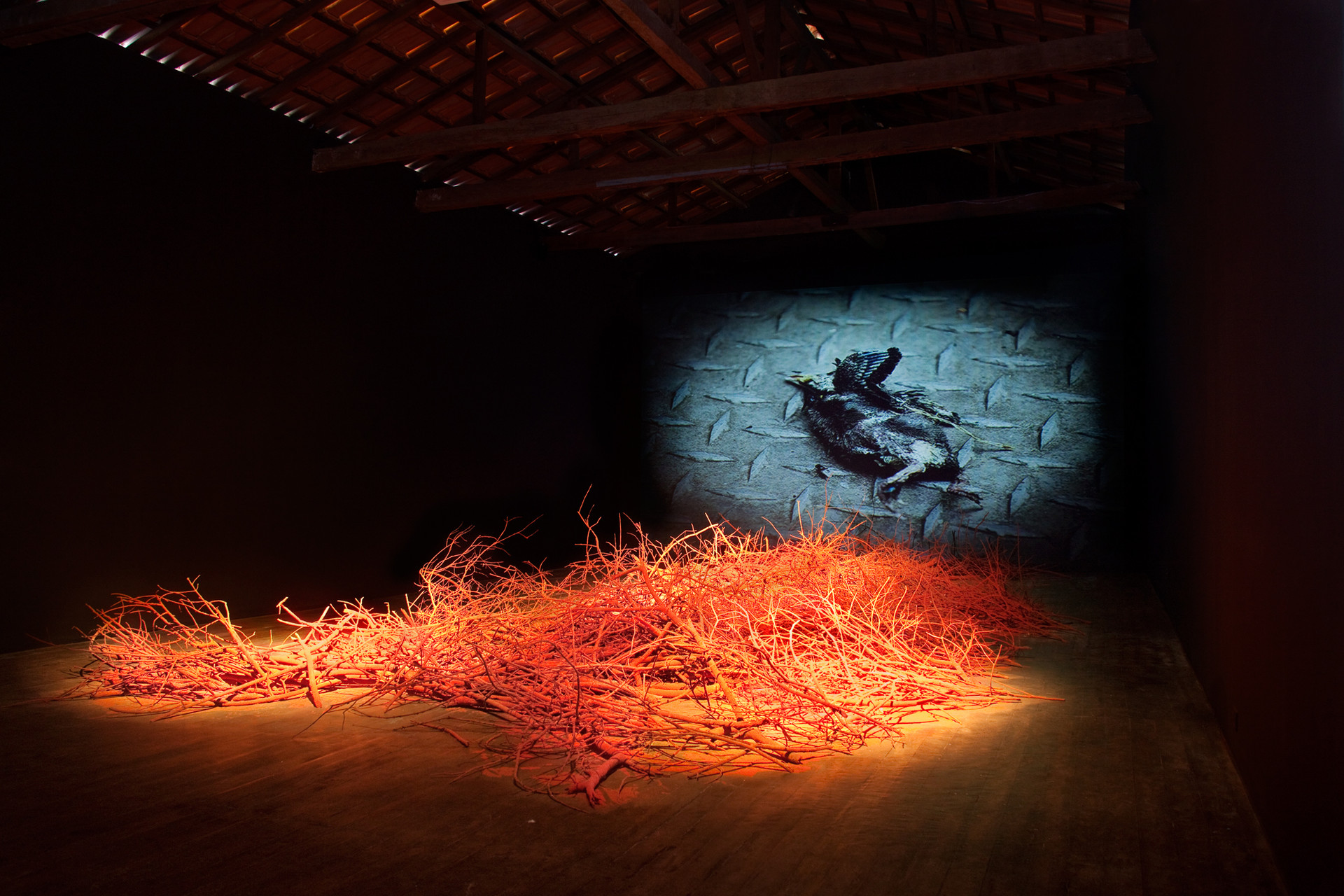 URU-KU: the forgotten disciplines, 2011