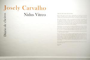 Nidus Vitreo, 2010-2011