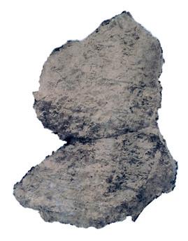 cuineiform P002627, 2006