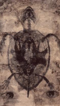 0001.Tracajá 11, 2002